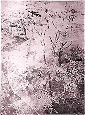Photogravure etchings at https://kamprint.com/ & https://kamprint.com/xpress/